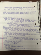 HIST 108 - Class Notes - Week 3
