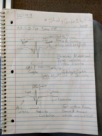 BYUI - ANAT 265 - Class Notes - Week 2