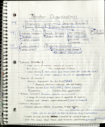 THE 1310 - Class Notes - Week 2