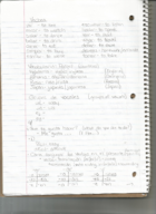 SPANISH 103 - Class Notes - Week 4