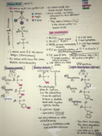 Chemistry  127 - Study Guide