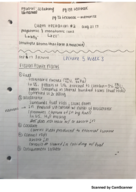 CHM 115 - Class Notes - Week 3