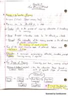 PSY 101 - Class Notes - Week 11