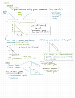 ECON 101 - Class Notes - Week 5