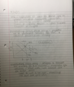 ECON 202 - Class Notes - Week 12