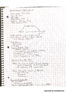 PSY 1200 - Class Notes - Week 13