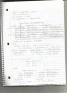 SPANISH 103 - Class Notes - Week 8