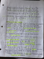 CHM 116 - Class Notes - Week 15