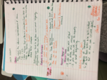 anth 410 class notes