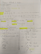 Penn State - PHYS 211 - Class Notes - Week 1