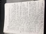 hist 425 class notes