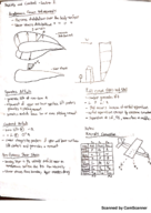 UF - BME 101 - Class Notes - Week 2
