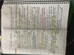 Bus 358 - Class Notes - Week 4