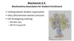 What are the chemical and three-dimensional structures of biological molecules?