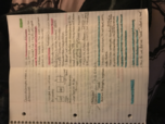 CBU - Bus 358 - Class Notes - Week 4