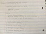 fst notes