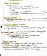UIC - MGMT 350 - Class Notes - Week 2