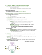 BS 161 - Study Guide