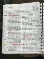 Bus 358 - Class Notes - Week 7
