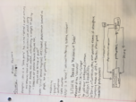 ISS 310 - Class Notes - Week 3