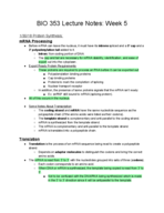 transcription translation lecture notes