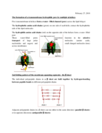 What is passive diffusion?