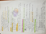 SYG 2000 - Class Notes - Week 7