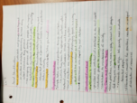 SYG 2000 - Class Notes - Week 9