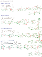 How do you illustrate the cyclic acetal formation?