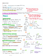 What is the step in turning glucose into pyruvate?