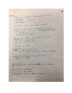 Baylor University - FRE 3351 - Class Notes - Week 11