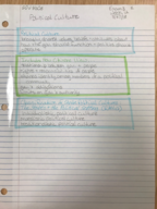 GOV 2306 - Class Notes - Week 12