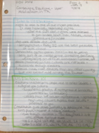 GOV 2306 - Class Notes - Week 13