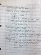 PSY 1101 - Study Guide