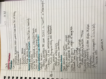 PSY 381 - Class Notes - Week 5