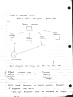 PSY 1100 - Class Notes - Week 11