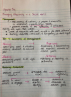 Texas State - MGT 3303 - Class Notes - Week 1