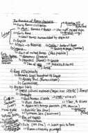 University of Memphis - HIST 4322 - Class Notes - Week 1