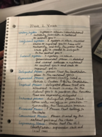 UH - POLS 25444 - Class Notes - Week 2