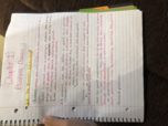 BUSN 1301 - Study Guide