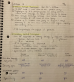 UB - BIO 303 - Class Notes - Week 2