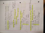 ECON 1113 - Class Notes - Week 11