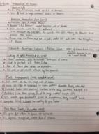 HIST 1378 - Class Notes - Week 8