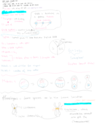 BIOL 1404 - Class Notes - Week 1