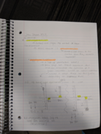 PHIL 1020 - Class Notes - Week 2