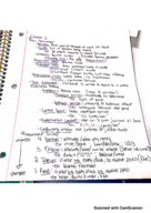 PSY - Class Notes - Week 1