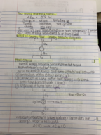 UCR - PHYS 002 - Study Guide - Midterm