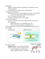 BIOL - Class Notes - Week 6