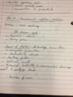 OU - ECON 1113 - Class Notes - Week 7