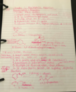 Temple - CHEM 2201 - Class Notes - Week 6